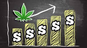 5 Azioni di Marijuana più Redditizie Oggi